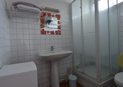 Hibiscus studio n°3