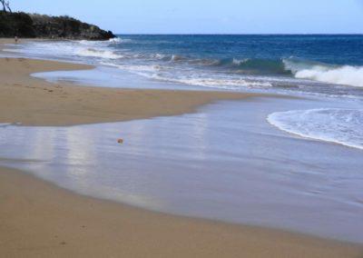 Plage de Grand-Anse, Basse-Terre, activités de baignade