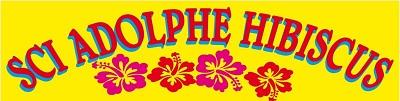 Sci Adolphe Hibiscus - Location saisonnière Guadeloupe